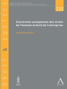 Convention européenne des droits de l'homme et droit de l'entreprise: Droit européen