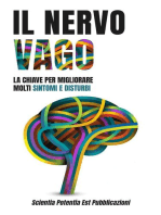 Il Nervo Vago: La Chiave per Migliorare Molti Sintomi e Disturbi