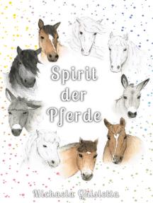 Spirit der Pferde: Eine Bilderreise durch deine Emotionen