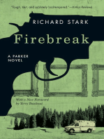 Firebreak